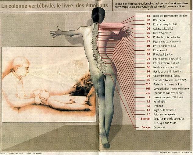 La colonne vertebrale le livre des emotions