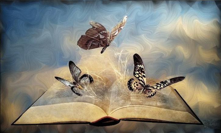 Livre papillon